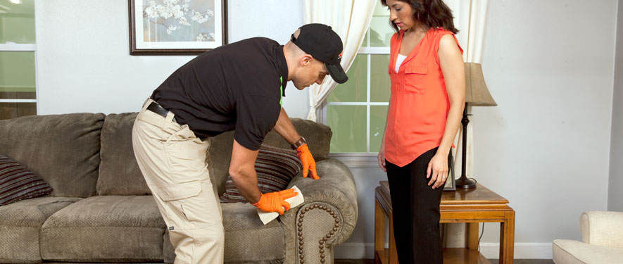 Mansfield, MA carpet upholstery cleaning