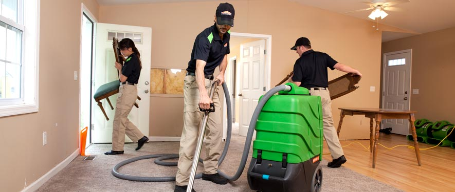 Mansfield, MA cleaning services